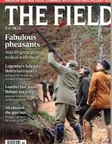 Field-mag